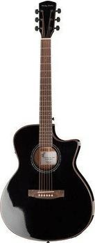 Harley Benton EAX-500 Black Thinline