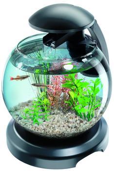 Tetra Aquarium Cascade Globe