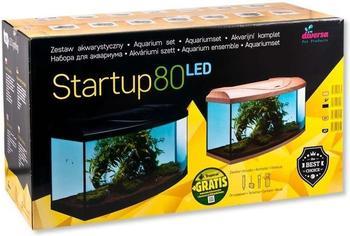 diversa Startup 80 LED schwarz