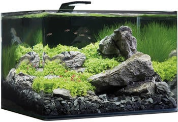 Dennerle Scaper's Tank Basic 55L (5594)