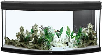Aquatlantis Fusion Horizon 120 LED 2.0 ohne Unterschrank schwarz