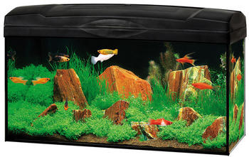 Dehner Gute Wahl Aquarien-Set LED 54L schwarz