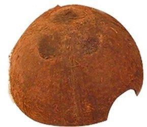 JBL Cocos Cava 1/2 L