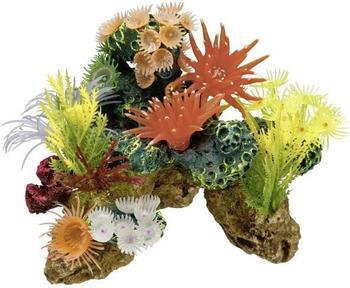 Nobby Koralle mit Pflanzen (19 x 15 x 15 cm)