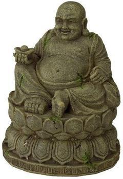 EBI Aqua Della Buddha M (234-429617)