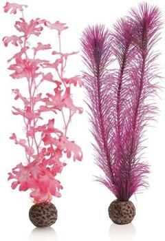 biOrb Seetang Set mittelgroß pink (46082)