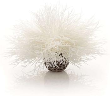 biOrb Aquarien Seelilie weiß (46078)