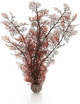 biOrb Hornkoralle groß dunkelrot (46073)