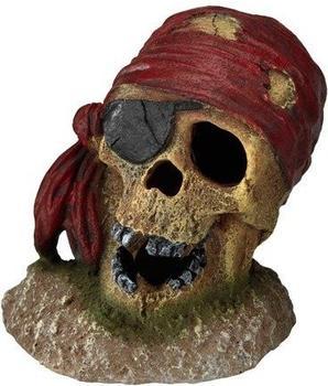 EBI Aqua Della Pirate Skull Eye-Patch (234-430071)