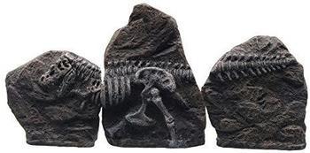 HAGEN Marina Fossil Ornament T-Rex 3-teilig