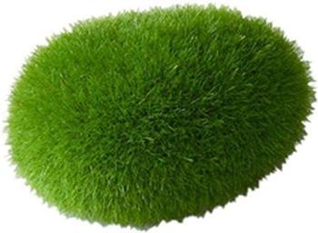 EBI Aqua Della Moos Ball 6x4x35cm (234-426470)