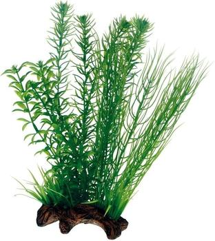 Hobby Flora Root 2 L 30cm
