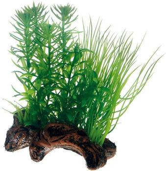 Hobby Flora Root 2 S 17cm