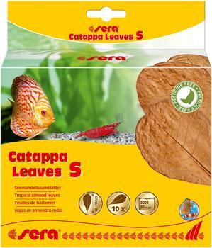 Sera sera Catappa Leaves S