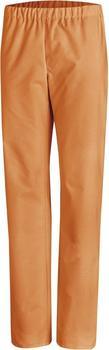 Leiber Bereichskleidung Clean Dress Unisex (08/780) orange