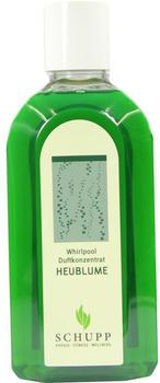 Schupp Whirpool Duftkonzentrat Heublume (500 ml)