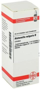 DHU Alchemilla Vulg. Urtinktur (20 ml)