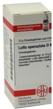 DHU Luffa Operculata D 6 Globuli (10 g)