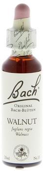 Nelsons Bachblüten Walnut Tropfen (20 ml)