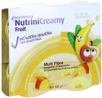 nutricia-nutrini-creamy-fruit-sommerfruechte-4x100-g