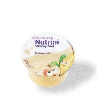 nutricia-nutrini-creamy-fruit-sommerfruechte-48x100-g