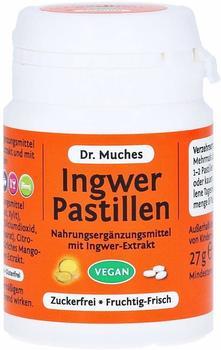 Dr. Muche Ingwer Pastillen zuckerfrei (27 g)