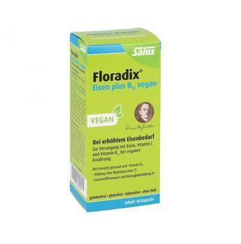 SALUS Floradix Eisen plus B12 vegan 40 St.