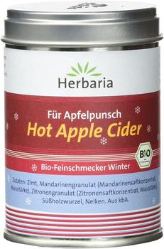 herbaria-hot-apple-cider-kba