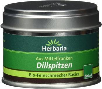 herbaria-dillspitzen-kba