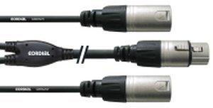 Cordial CFY 0.3 FMM Y-Adapterkabel (0,3m)