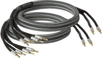 goldkabel-chorus-bi-wire-0500-2-x-5m