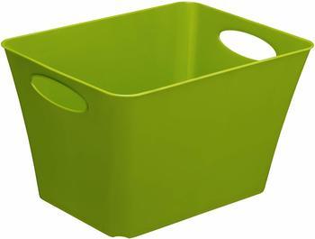 rotho-living-box-24l-gruen