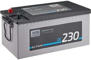 Ective Batteries DC 230 AGM