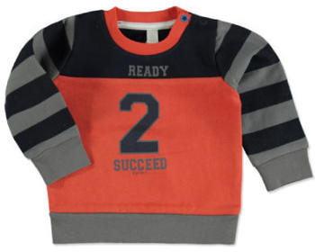 Esprit Boys Sweatshirt brick (RI15012-382)