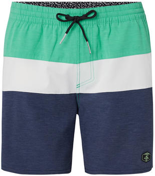 O'Neill Sunset Shorts Swim Briefs scale