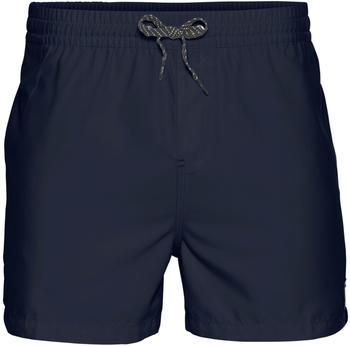 Quiksilver Everyday 15 Swim shorts (EQYJV03531) navy blazer