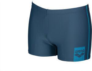 Arena Swimwear Arena Basics Shorts (2294) shark/turquoise