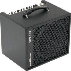 AER Bottom Line Amp One