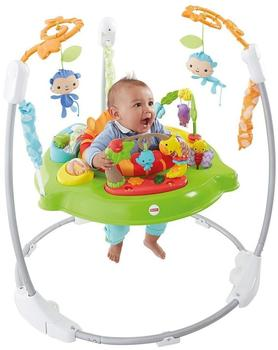Mattel Fisher-Price CHM91 Spielspaß Rainforest Jumperoo
