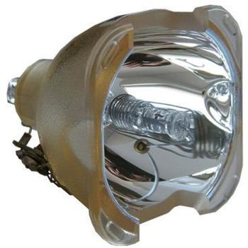 Philips ProLine Ersatzlampe für OPTOMA SP.89601.001 BL-FS300A
