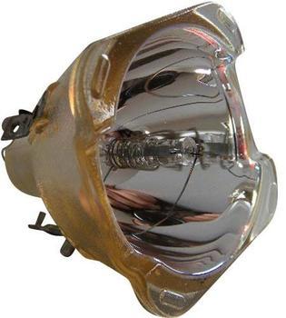 Philips ProLine Ersatzlampe für NEC NP20LP, 60003130
