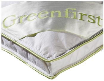 Dänisches Bettenlager Greenfirst
