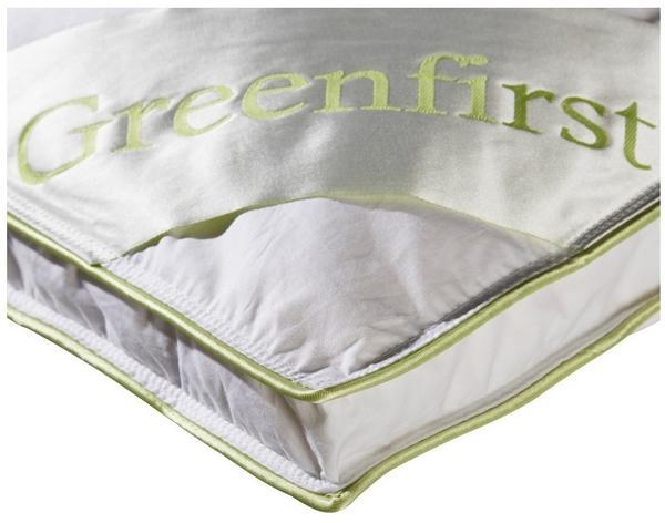 Danisches Bettenlager Greenfirst Test Test Testbericht De