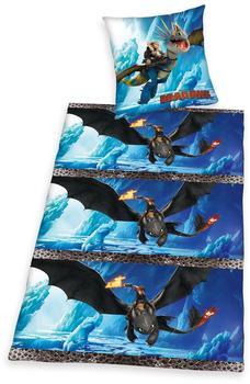 Herding Dragons (4632.35.050) 80x80+135x200cm