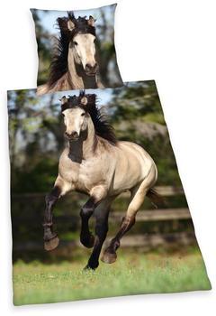 Herding Pferd (442412050) 80x80+135x200cm