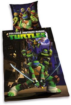 herding-teenage-mutant-ninja-turtles-135x20080x80cm