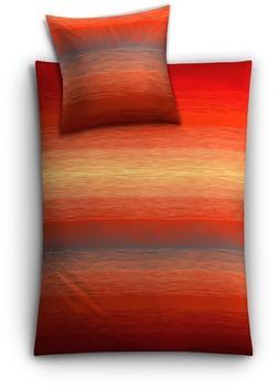 Kleine Wolke Biancheria da letto Chicago 80x80+135x200cm