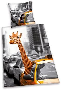 Herding New York Safari 80x80+135x200cm