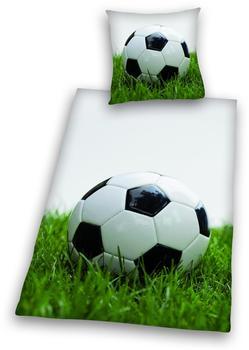 Herding Fußball auf Wiese 80x80+135x200cm
