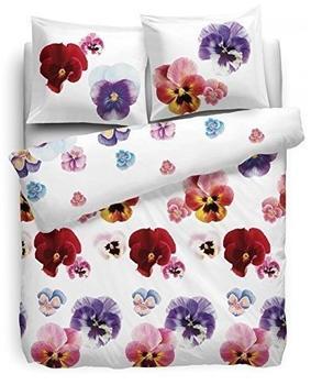 hnl-renforce-bettwaesche-135x200cm-violet-garden-violett-100-baumwolle